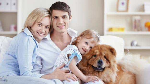 Wills & Trusts dog-young-family Direct Wills Ponders End